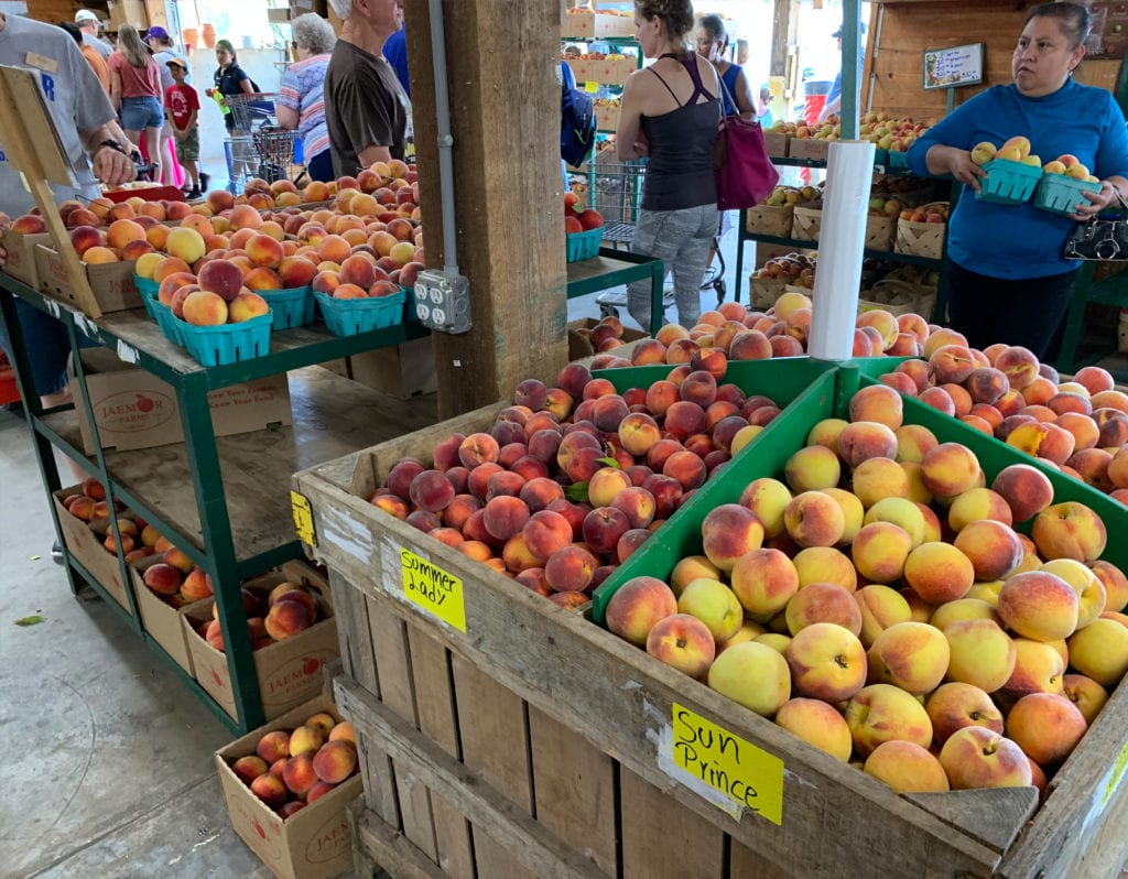 Additional Varieties of Peaches for Sale